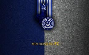 Картинка wallpaper, sport, logo, football, Bundesliga, MSV Duisburg