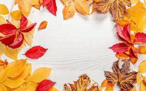 Картинка осень, листья, открытка, шаблон, заготовка