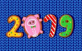 Картинка colorful, Новый Год, цифры, background, New Year, Happy, pig, 2019