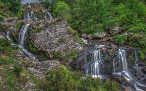 Картинка зелень, вода, река, камни