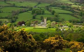 Картинка зелень, деревья, поля, дома, деревня, панорама, храм, Devon, England, Dartmoor National Park, Widecombe in the …
