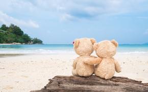 Обои песок, море, пляж, любовь, игрушка, медведь, мишка, пара, доска, love, двое, beach, bear, sea, romantic, ...