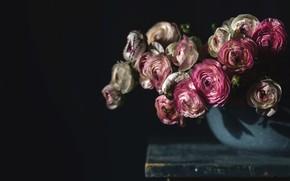Картинка цветы, стол, фон