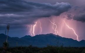 Картинка гроза, лето, небо, облака, горы, тучи, природа, молнии, США, Arizona, Dos Cabezas Mountains, Willcox