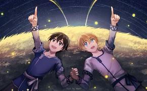 Картинка поле, звезды, ночь, парни, Sword Art Online, Мастера Меча Онлайн