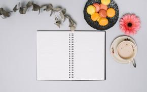 Картинка цветы, кофе, печенье, блокнот