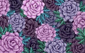 Картинка Фон, Цветы, Цветочный, розы