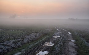 Картинка дорога, поле, туман