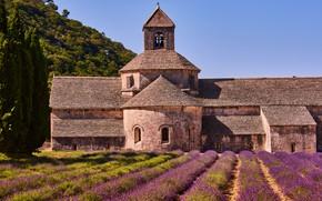 Картинка поле, лето, небо, цветы, природа, замок, Франция, архитектура, много, лаванда, сиреневые, плантация, Прованс, лавандовое поле