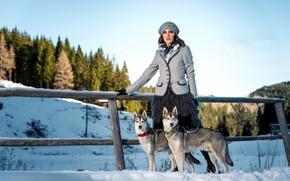 Картинка собаки, девушка, забор