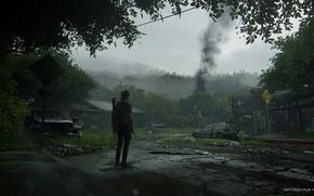 Картинка лес, машины, дым, деревня, арт, Элли, The Last of Us Part II
