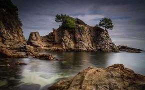 Картинка море, небо, облака, деревья, камни, пасмурно, скалы, берег, дно