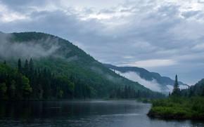 Картинка лес, облака, деревья, горы, туман, река, Канада, Jacques-Cartier National Park