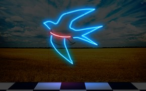Картинка neon, museum, swallow, neon sign, my works, neom, art gallery