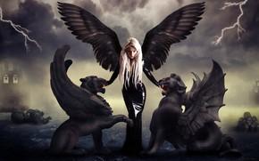 Картинка тучи, замок, готика, молнии, мистика, блондинка, скелет, черное платье, демонесса, грифоны, колокола, темная фея, посланица …