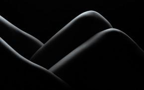 Картинка ноги, тело, руки