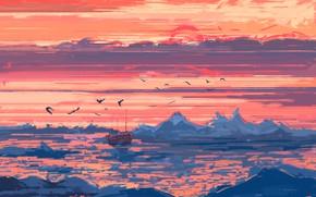 Картинка лед, море, небо, закат, птицы, корабль