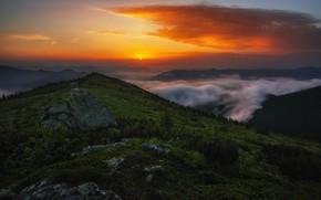Картинка облака, пейзаж, горы, природа, туман, камни, рассвет, утро, Карпаты