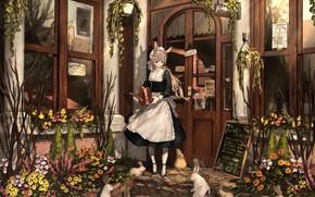 Картинка девушка, кролики, кафе, ушки, горничная