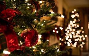 Картинка зима, шарики, ветки, праздник, шары, игрушки, огоньки, Рождество, Новый год, ёлка, бант, хвоя, гирлянды, боке, …