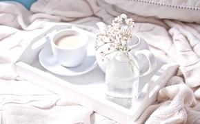 Картинка уют, чай, завтрак, молоко, чашка, поднос, Zulfiska