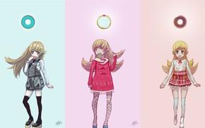 Картинка коллаж, девочка, пончики, Bakemonogatari
