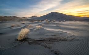 Картинка природа, пустыня, утро