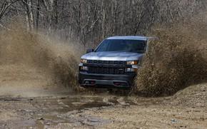 Картинка брызги, земля, Chevrolet, грязь, пикап, Custom, Silverado, 2020