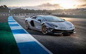 Обои закат, Lamborghini, суперкар, 2018, Aventador, SVJ, Aventador SVJ