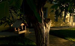 Обои пейзаж, трава, солнце, лето, зелень, trees, дерево, листья, tree, деревья, leaves, birdhouse, день, природа, скворечник