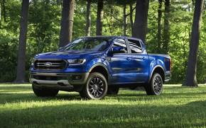 Картинка синий, поляна, Ford, пикап, Ranger, 2019, FX2 Package