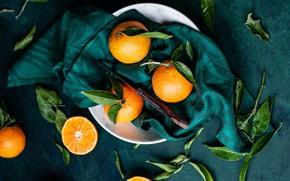 Картинка листья, темный фон, апельсины, тарелка, нож, ткань, фрукты, мандарины