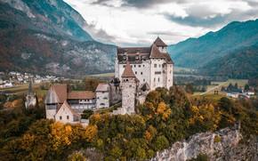 Картинка осень, лес, горы, замок, Liechtenstein, Лихтенштейн, Gutenberg Castle, Гутенберг