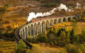 Картинка Autumn, Train, Glenfinnan, Arched bridge