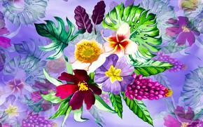 Картинка Grafika, Kwiaty, Tło