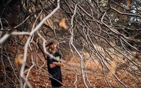Картинка ветки, дерево, мальчик