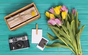 Картинка ретро, подарок, букет, фотоаппарат, тюльпаны