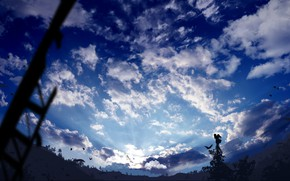 Картинка небо, облака, птицы, природа