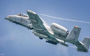 Картинка USAF, ВВС США, Штурмовик, Эффект Прандтля — Глоерта, Fairchild-Republic A-10 Thunderbolt II, Кокпит, Warthog, HESJA …