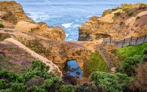 Картинка море, камни, скалы, побережье, Австралия, лестница, тропинка, кусты, Australian National Heritage