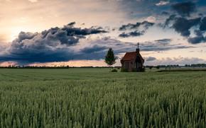 Картинка sunset, goldenhour, Kapel op de Heuvel