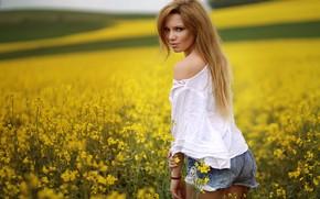 Обои поле, девушка, блузка, лето