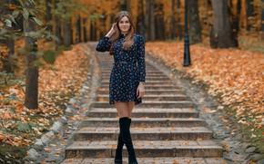 Картинка осень, деревья, улыбка, парк, Девушка, платье, ступеньки, ножки, сапожки, Сергей Васильев
