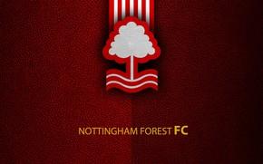 Картинка wallpaper, sport, logo, football, English Premier League, Nottingham Forest