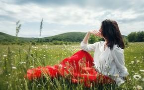 Картинка лето, трава, девушка, природа, поза, фото, ромашки, луг, Андрей Васильев