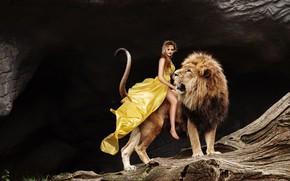 Картинка девушка, поза, темный фон, друг, дерево, скалы, ноги, лев, макияж, платье, пасть, хвост, шатенка, наездница, ...