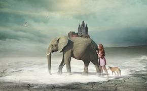 Картинка девушка, фантазия, слон, арт, лиса