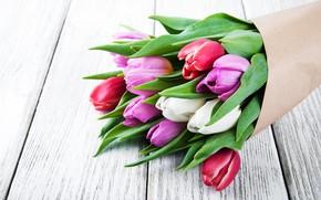 Картинка цветы, букет, colorful, тюльпаны, wood, pink, flowers, tulips, spring, purple
