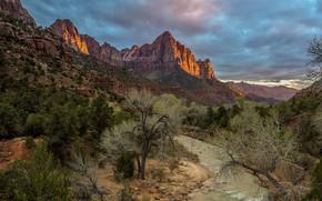 Обои горы, каньон, речка