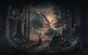 Картинка лес, сова, водопад, девочка, якорь, nightwish, маятник